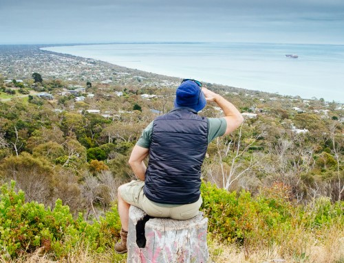 Arthurs Seat, Mornington Peninsula – Bushwalking Victoria